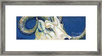 Blue Ram Framed Print by Pat Burns