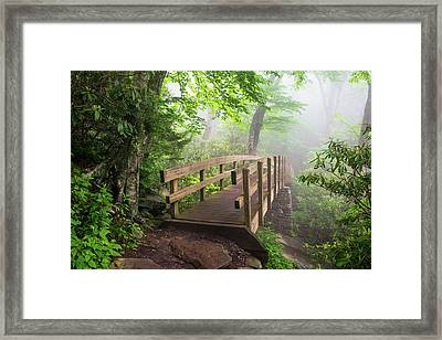 Blue Ridge Parkway Hiking Tanawha Trail Rough Ridge Framed Print by Dave Allen