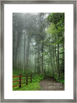 Blue Ridge - Trees In Fog Country Road I Framed Print by Dan Carmichael