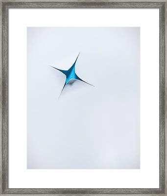 Blue Star On White Framed Print by Scott Norris