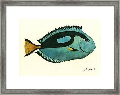 Blue Tang Fish Framed Print by Juan Bosco