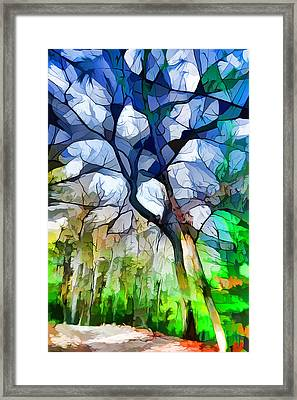Blue Tree Framed Print by Lilia D