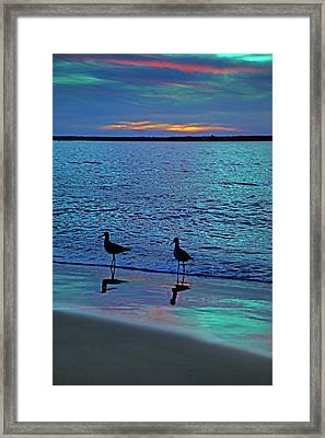 Blue Without You Framed Print by Betsy Knapp