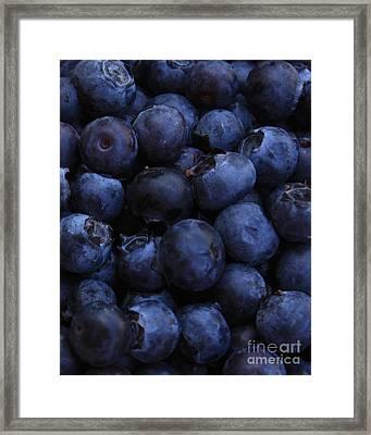 Blueberries Close-up - Vertical Framed Print by Carol Groenen