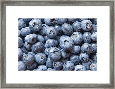 Blueberries Framed Print by Jaroslaw Grudzinski
