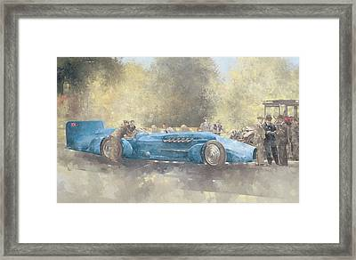 Bluebird And Ghost Framed Print by Peter Miller
