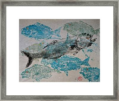 Bluefish Delight - Lunchtime  Framed Print by Jeffrey Canha