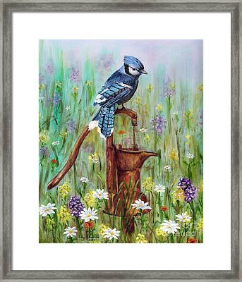 Bluejay Peaceful Perch Framed Print by Judy Filarecki
