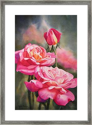 Blushing Roses With Bud Framed Print by Sharon Freeman