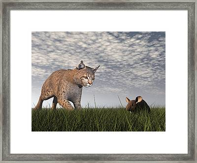 Bobcat Hunting Mouse - 3d Render Framed Print by Elena Duvernay