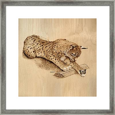 Bobcat N Friend Pillow /bag Framed Print by Ron Haist