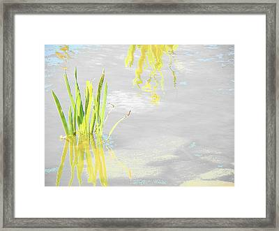 Body Of Water Framed Print by Lenore Senior
