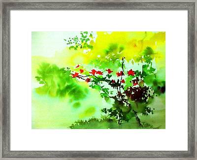 Boganwel Framed Print by Anil Nene