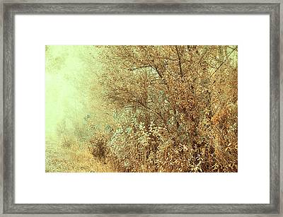 Bohemian Autumn Framed Print by Jenny Rainbow