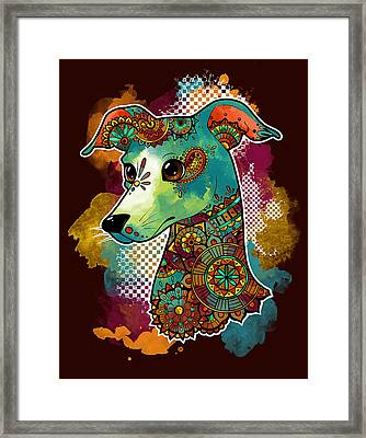 Bohemian Italian Greyhound Framed Print by Jessica Lintner