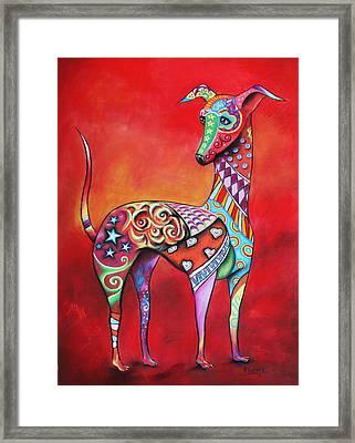 Italian Greyhound  Framed Print by Patricia Lintner