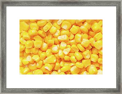 Boiled Corn Seeds Framed Print by Vadim Goodwill
