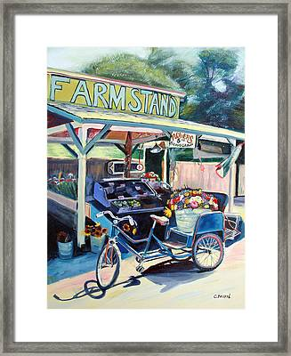 Bolinas Farmstand Bike Framed Print by Colleen Proppe