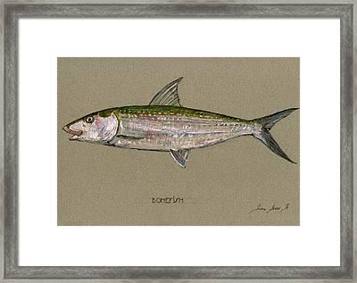 Bonefish Framed Print by Juan  Bosco