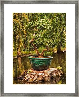 Bonsai Framed Print by Wim Lanclus
