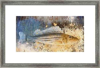 Book Of Fish Collage Framed Print by Carol Leigh