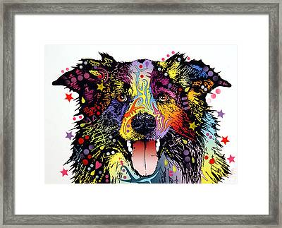 Border Collie 2 Framed Print by Dean Russo