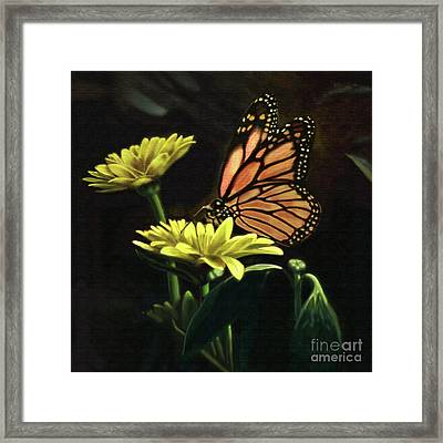 Born Again Framed Print by Larry Cole