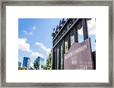 Boston Common V2 Framed Print by Alanna DPhoto