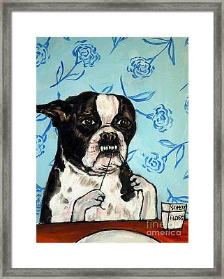 Boston Terrier Flossing Framed Print by Jay  Schmetz