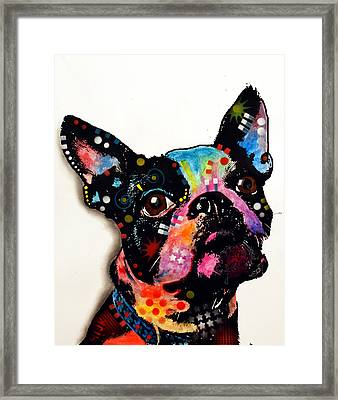 Boston Terrier II Framed Print by Dean Russo
