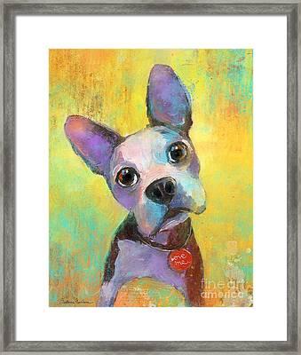 Boston Terrier Puppy Dog Painting Print Framed Print by Svetlana Novikova