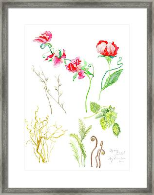 Botanical Nature - Spring Study 1 Framed Print by Audrey Jeanne Roberts
