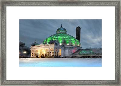 Botanical Night Framed Print by Peter Chilelli