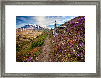 Boundary Trail Framed Print by Darren  White