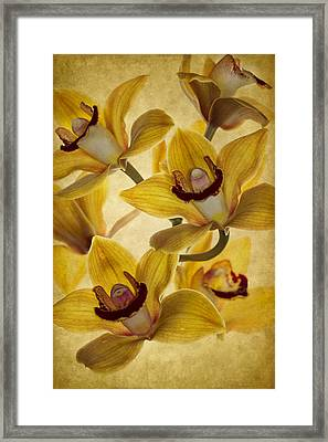 Bouquet Framed Print by Rebecca Cozart