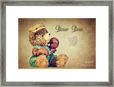 Boxer Bear Framed Print by Angela Doelling AD DESIGN Photo and PhotoArt
