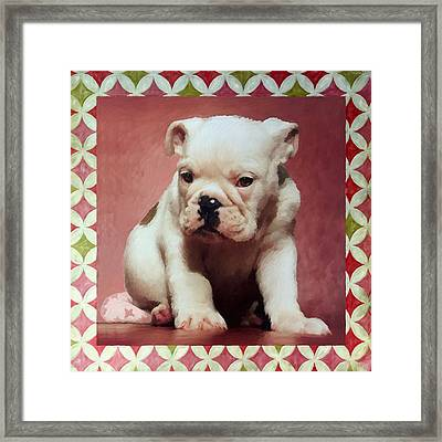 Boxer Puppy Painting Framed Print by Enzie Shahmiri