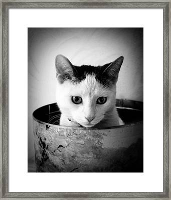 Boy George Framed Print by Cabral Stock