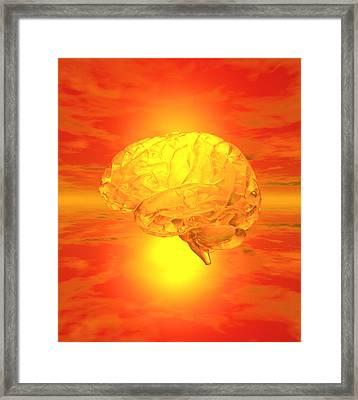 Brain Framed Print by Mehau Kulyk