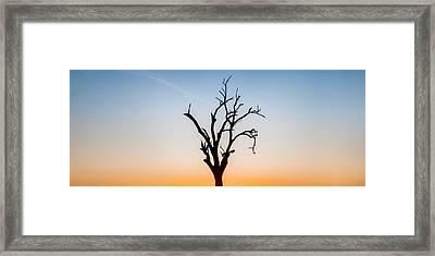 Branches Framed Print by Az Jackson