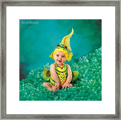 Brando Framed Print by Anne Geddes