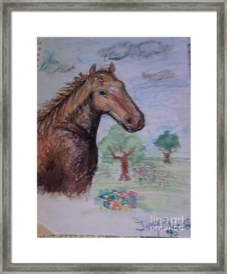 Brandy The Horse Framed Print by Jamey Balester