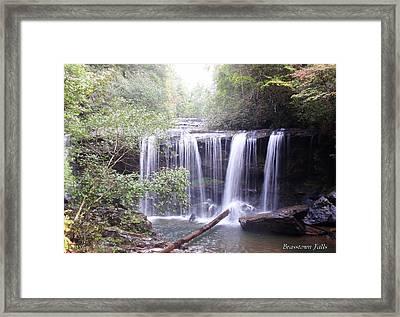 Brasstown Falls Framed Print by Lane Owen