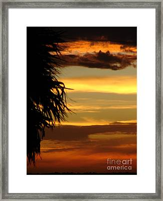 Breaking Dawn Framed Print by Priscilla Richardson
