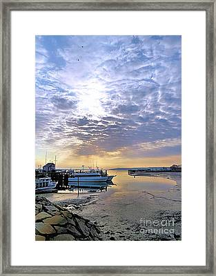 Breakthrough Framed Print by Janice Drew