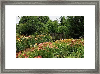 Bridge In Daylily Garden Framed Print by Sandy Keeton