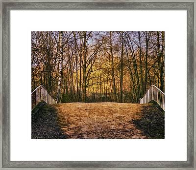 Bridge In Park Framed Print by Wim Lanclus