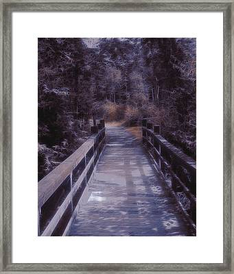 Bridge In The Shenandoah Framed Print by Susan  Epps Oliver