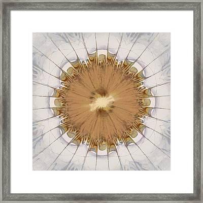 Bristlewort Fantasy Flowers  Id 16163-232616-96380 Framed Print by S Lurk