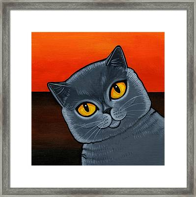 British Shorthair Framed Print by Leanne Wilkes